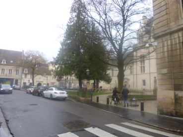 Dijon (8)