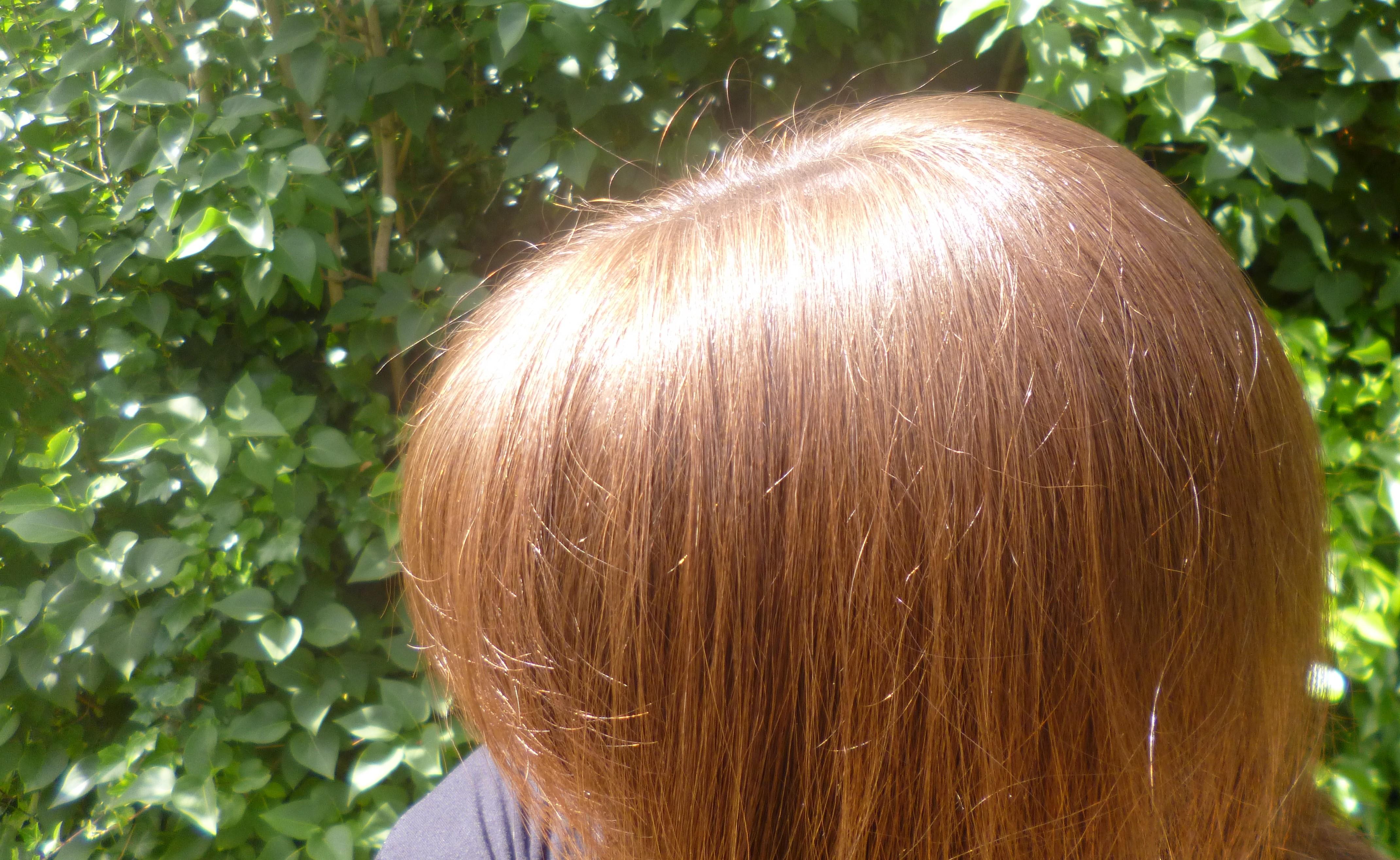 Coloration cheveux olia bronze
